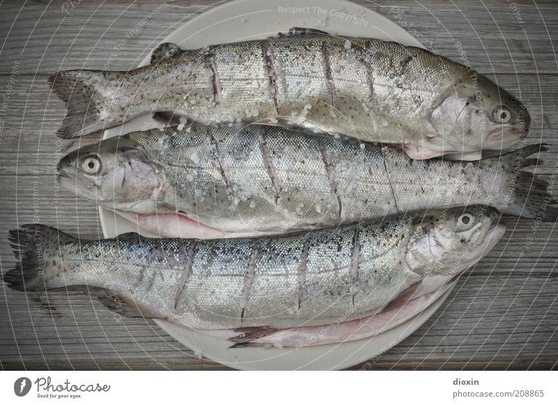 3(00), Baby! Fisch Ernährung Bioprodukte Grillen Grillsaison Teller Schuppen Forelle Tier Tiergruppe liegen frisch geschmackvoll Geschmackssache Flosse Farbfoto