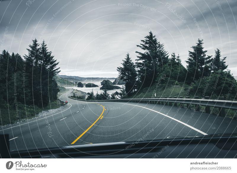 Road Trip // West Coast USA, Oregon Himmel Natur Ferien & Urlaub & Reisen Sommer grün Baum Landschaft Meer Wolken Ferne Straße Leben gelb Wege & Pfade Küste
