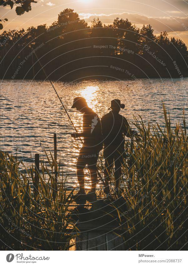 anglerhotspot Mensch maskulin 2 Umwelt Natur Schönes Wetter Küste Seeufer Flussufer Insel genießen Angeln Angler Reflexion & Spiegelung Angelrute Steg