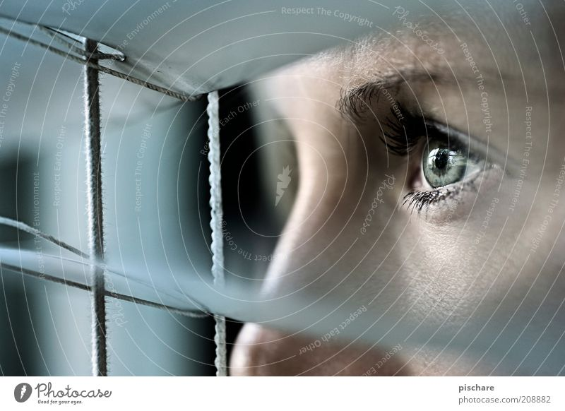 watch out! feminin Junge Frau Jugendliche Gesicht Auge 18-30 Jahre Erwachsene Fenster beobachten Blick warten dunkel Neugier blau Angst Erwartung Jalousie