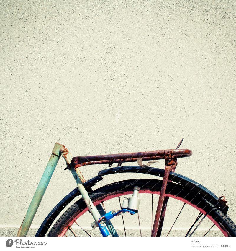 Nach fest kommt ab Fahrrad Mauer Wand Rost alt kaputt Schutzblech Gepäckträger Diebstahl Dynamo Rad vergessen Farbfoto Gedeckte Farben Außenaufnahme