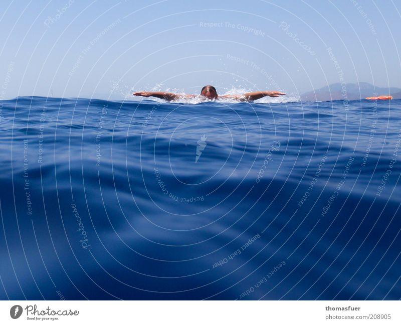 Butterfly Mensch Mann blau Wasser Meer Sommer Erwachsene Kopf Wellen Schwimmen & Baden Arme Schwimmsport Schönes Wetter Fitness Ostsee sportlich