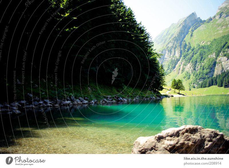 Schweizer Bergsee Wasser Himmel Sommer Ferien & Urlaub & Reisen ruhig Einsamkeit Leben Erholung Berge u. Gebirge Freiheit See Zufriedenheit Felsen Ausflug