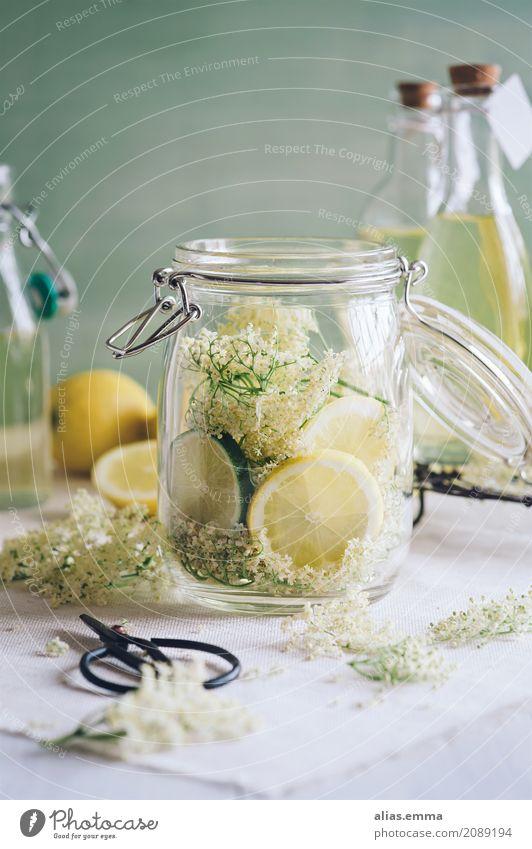 Holunderblütensirup Holunderbusch Holunderbeeren Schorle Wasser Zitrone Limone Getränk trinken Erfrischung Saftflasche Saftglas Glas Flasche Sirup altehrwürdig