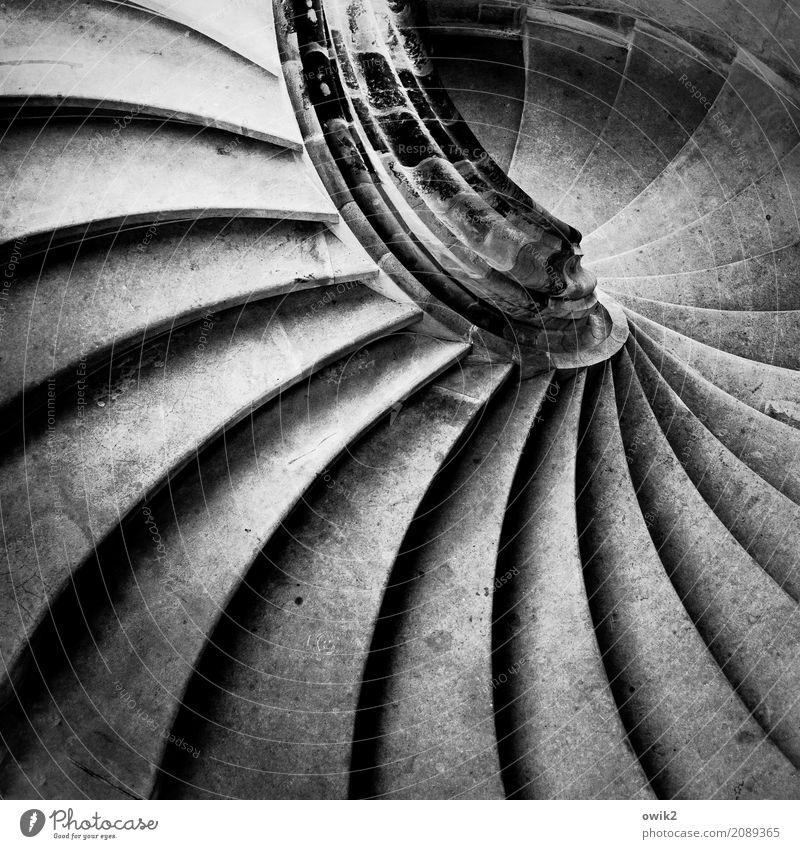 Tiefgehend Bauwerk Gebäude Architektur Treppe Treppengeländer Wendeltreppe Sandstein alt historisch rund unten achtsam Vorsicht hart geschwungen gekrümmt