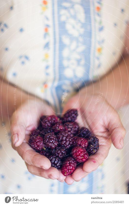 Hände der alten Frau, die Brombeeren halten Lebensmittel Frucht Ernährung Bioprodukte Vegetarische Ernährung Mensch feminin Junge Frau Jugendliche Senior Hand 1
