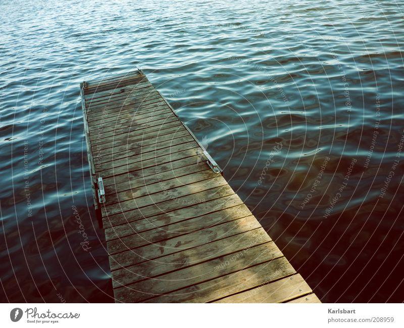 \\ steg. Natur Wasser Sommer Freude Ferien & Urlaub & Reisen ruhig Erholung Freiheit Holz Wege & Pfade See Wellen Gesundheit Design Umwelt