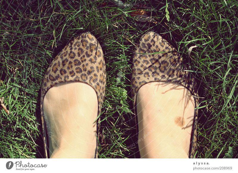 Leopardenfuß. feminin Fuß 1 Mensch Sommer Gras Schuhe einzigartig Schuhpaar Vogelperspektive 2 modern Mode Detailaufnahme trendy Muster Farbfoto Außenaufnahme