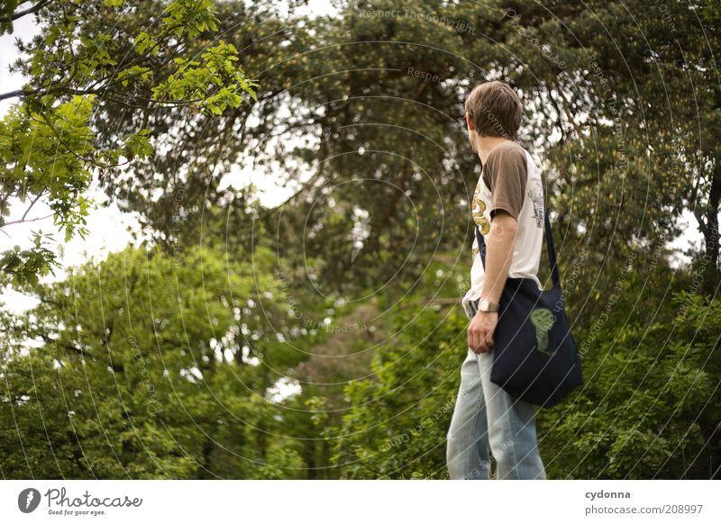 Im Wald Mensch Natur Jugendliche grün Baum Sommer ruhig Ferne Erholung Leben Freiheit Umwelt Bewegung träumen