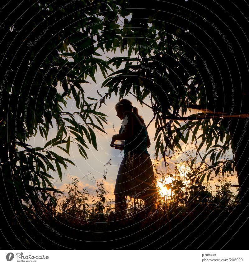 Sommerloch feminin Junge Frau Jugendliche 18-30 Jahre Erwachsene Natur Landschaft Himmel Sonne Sonnenaufgang Sonnenuntergang Sonnenlicht Klima Klimawandel