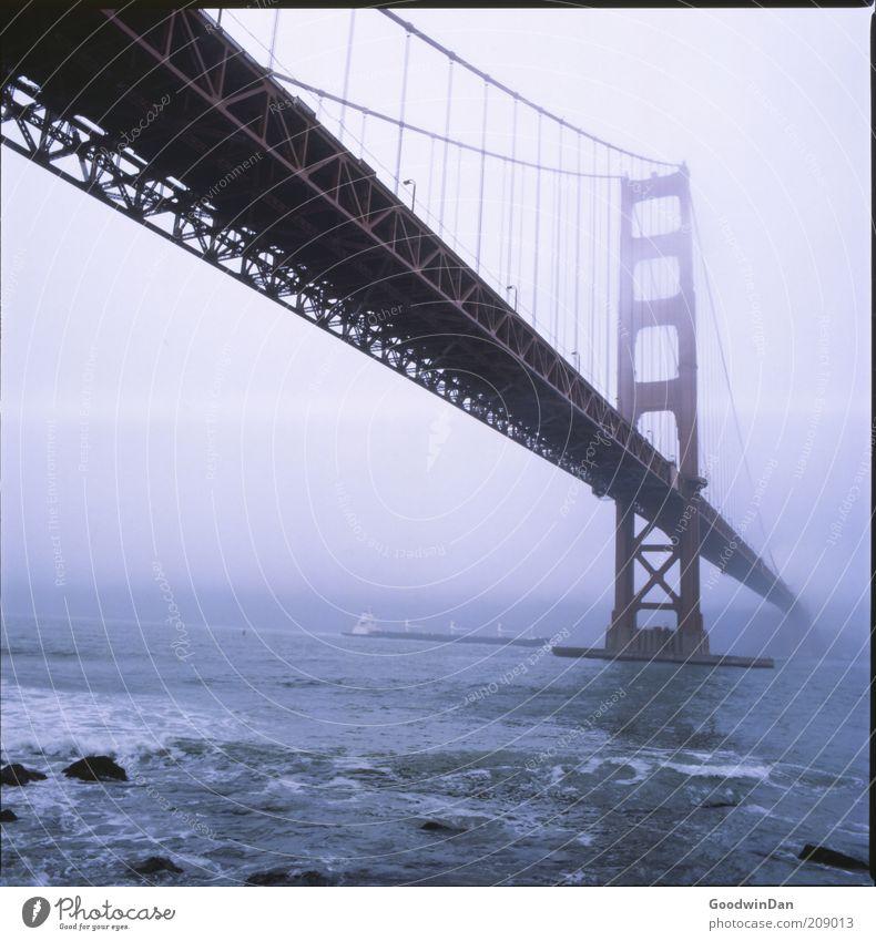 That Morning.. Umwelt Natur Klima Wetter Hauptstadt Stadtrand Brücke Bauwerk Architektur authentisch Ferne gigantisch Stimmung Farbfoto Außenaufnahme