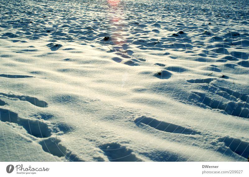 Spuren im Schnee :-) Natur weiß blau Winter Landschaft Umwelt hell Wetter Erde Eis Feld Zufriedenheit glänzend Ausflug wandern