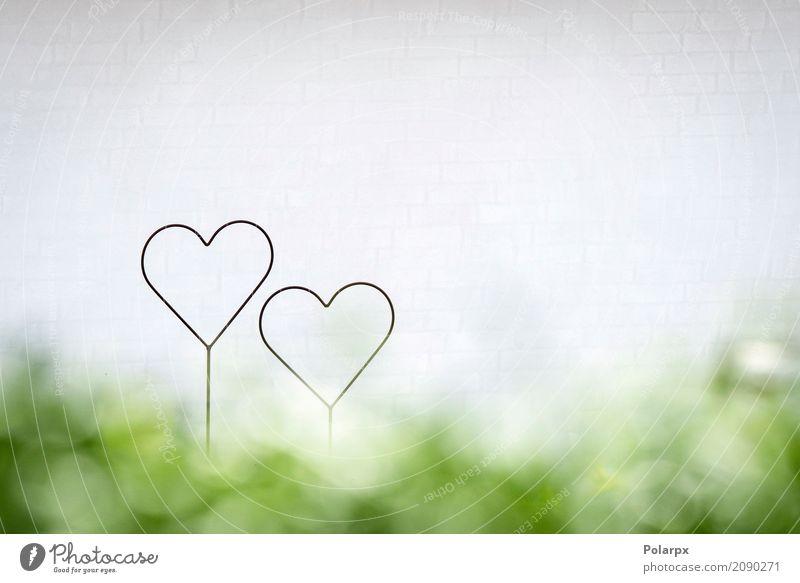 Zwei Herzen zusammen in einer hellen Zukunft Lifestyle Design Glück schön Leben Sommer Garten Dekoration & Verzierung Feste & Feiern Paar Kunst Umwelt Natur