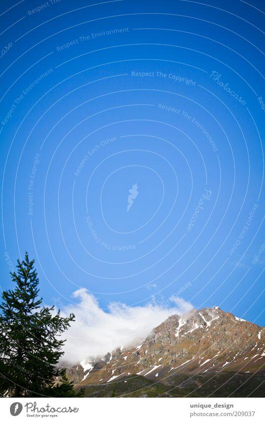 Himmel & Berge (2) Natur Baum Pflanze Sommer Wolken Berge u. Gebirge Landschaft Umwelt Felsen Schweiz Alpen Tanne Gipfel Schönes Wetter Blauer Himmel