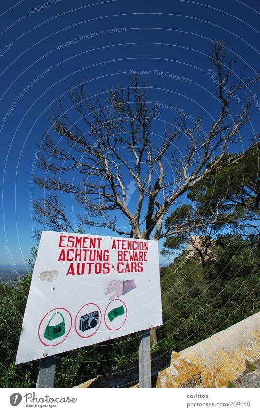 8ung !! Wolkenloser Himmel Sommer Schönes Wetter Baum Pinie Schilder & Markierungen Warnschild Warnung Hinweisschild bedrohlich eckig blau rot weiß Wachsamkeit