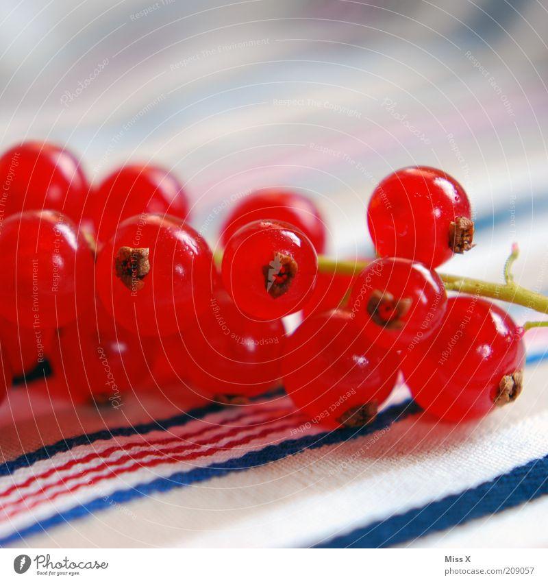 Johann II Lebensmittel Frucht Ernährung Picknick Bioprodukte Vegetarische Ernährung frisch klein lecker rund saftig sauer süß rot Beeren Johannisbeeren Farbfoto