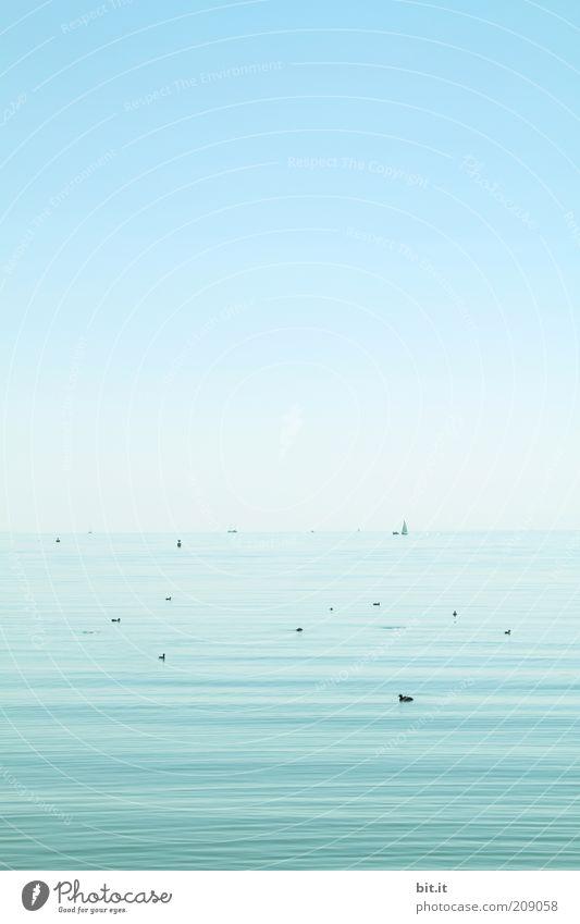 un da hinten ist mein Luftschloss... Himmel Natur Wasser blau Meer Sommer ruhig Einsamkeit Ferne Landschaft Freiheit See Zufriedenheit Horizont Urelemente Punkt