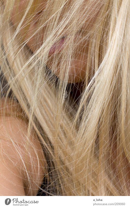 fairy floss Mensch Jugendliche schön Erwachsene Gesicht Erholung feminin Leben Haare & Frisuren Bewegung Stil Linie Zufriedenheit blond natürlich ästhetisch