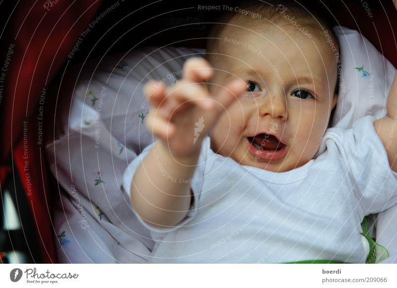 wIllhaben Mensch Kind Freude Gesicht Leben lustig Kindheit Baby liegen Beginn lernen Zukunft Sicherheit niedlich Neugier nah