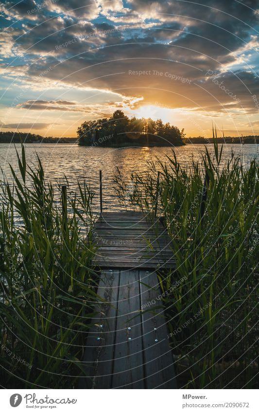 am alten anleger Natur Landschaft schilf Wolken Horizont Sonne Sommer Schönes Wetter Seeufer Bucht Fjord Insel schön Schwimmen & Baden Steg Anlegestelle Wellen