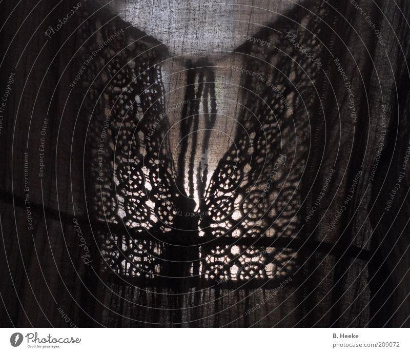 Auf der Wäscheleine Stil Design Mode Bekleidung Stoff Bluse Ornament Knoten Schleife Spitze Borte Gothic Symmetrie Transparente Gedeckte Farben Innenaufnahme