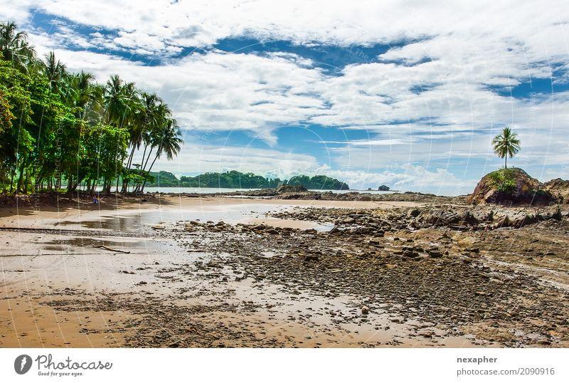 Tropical beach and part of rainforest Natur Ferien & Urlaub & Reisen blau grün Baum Landschaft Meer Erholung Wolken Freude Ferne Strand natürlich Küste