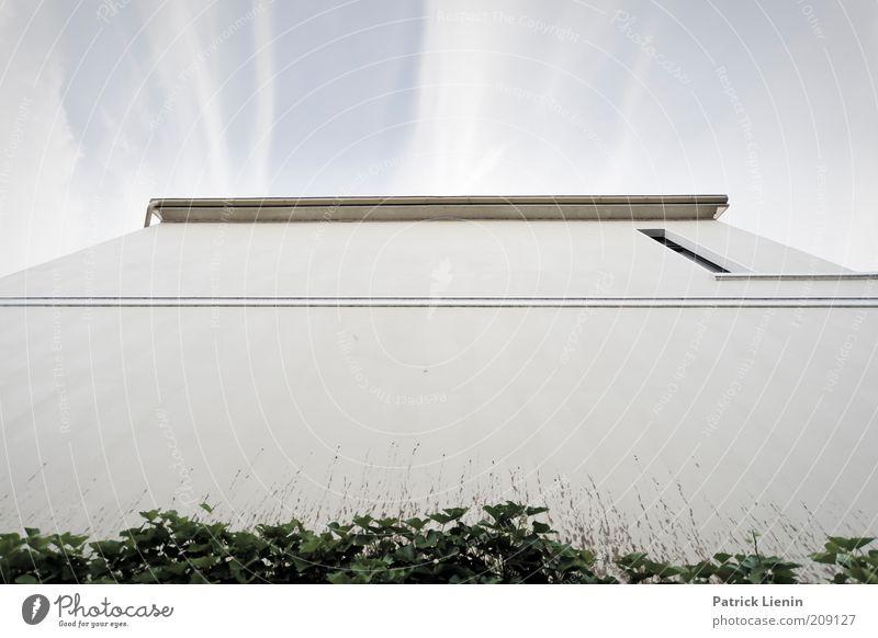 kleines Fenster Himmel weiß blau Pflanze Haus Wand Mauer Gebäude Linie hell Architektur Fassade leer Perspektive