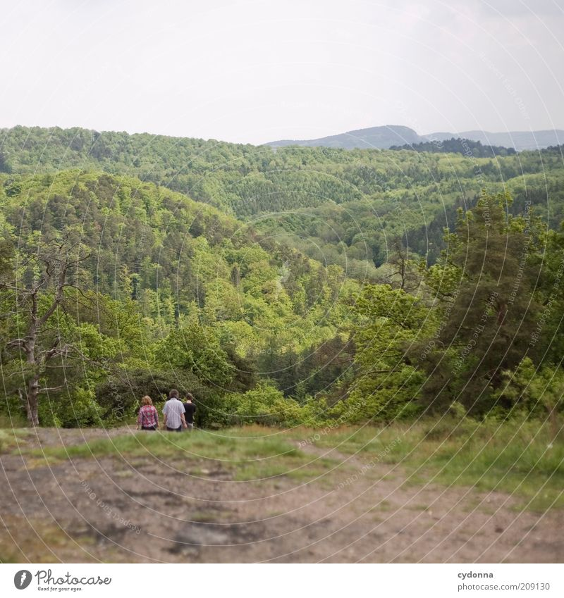 Wandern Mensch Natur Sommer Ferien & Urlaub & Reisen Ferne Wald Leben Erholung Berge u. Gebirge Bewegung Menschengruppe Wege & Pfade Familie & Verwandtschaft