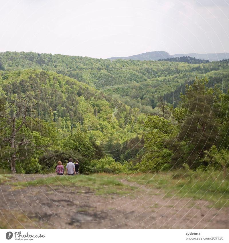 Wandern Mensch Natur Sommer Ferien & Urlaub & Reisen Ferne Wald Leben Erholung Berge u. Gebirge Bewegung Menschengruppe Wege & Pfade Familie & Verwandtschaft Landschaft Freundschaft wandern