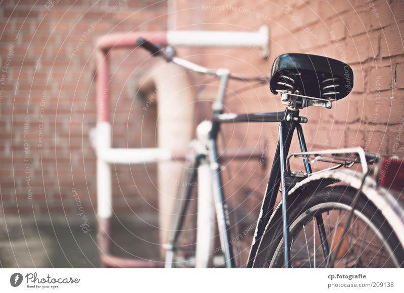 Drahtesel vor Backsteinmauer alt Wand Stein Mauer Gebäude Fahrrad Metall Fassade Bauwerk Verkehrsmittel Backsteinwand Fahrradparkplatz