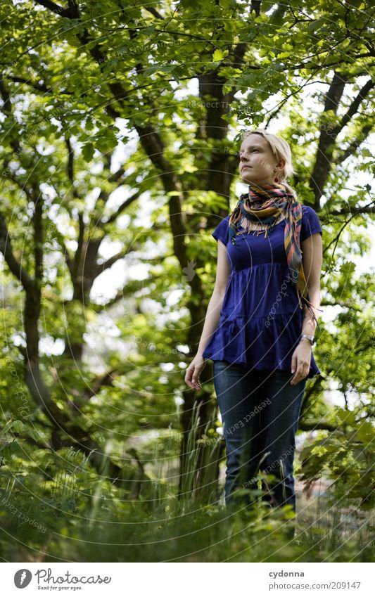 Waldflucht Lifestyle schön Gesundheit Leben Wohlgefühl Zufriedenheit ruhig Mensch Junge Frau Jugendliche 18-30 Jahre Erwachsene Umwelt Natur Frühling Baum Gras
