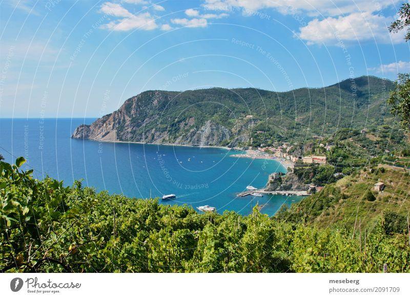 Montorosso al Mare, Italien Natur Landschaft Wasser Himmel Wolken Sonnenlicht Sommer Schönes Wetter Sträucher Küste Strand Dorf Kleinstadt