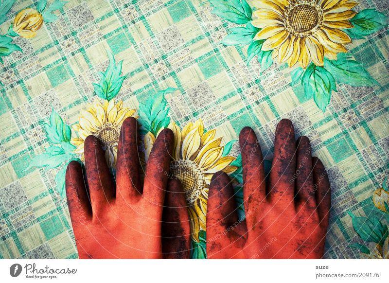 Alle Tauben fliegen hoooooch ... Hand Sommer Arbeit & Erwerbstätigkeit Frühling Garten dreckig Erde Tisch Pause Freizeit & Hobby Sonnenblume Beruf fertig