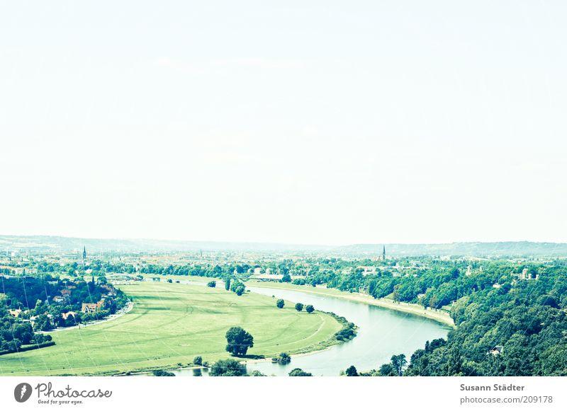 bald mit Brücke Natur Himmel Baum grün Sommer Freiheit Landschaft Ausflug Tourismus Fluss Aussicht Kultur Dresden Skyline Kurve Elbe