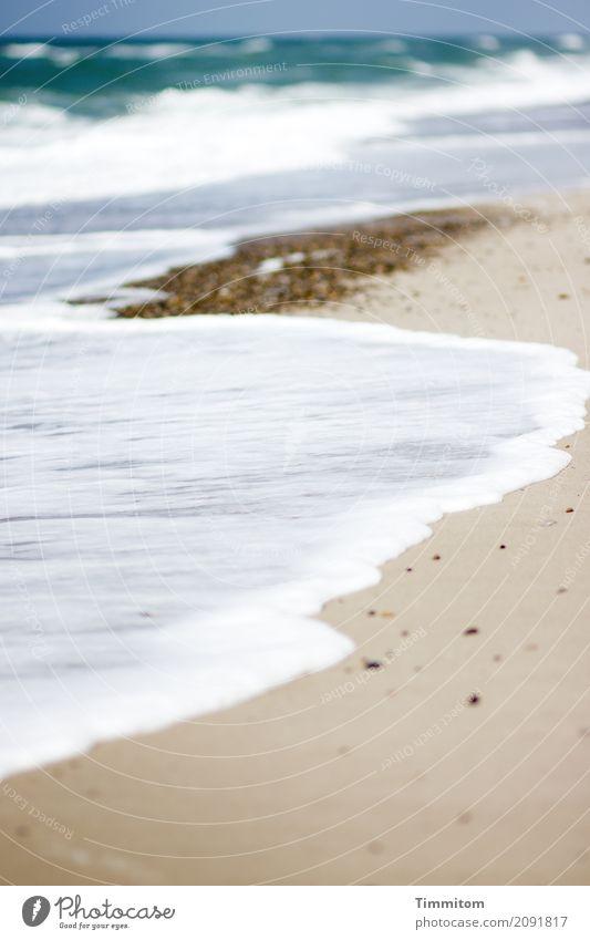 Weichspüler. Umwelt Natur Landschaft Urelemente Sand Wasser Himmel Schönes Wetter Strand Nordsee Dänemark Stein einfach natürlich blau braun weiß Gelassenheit