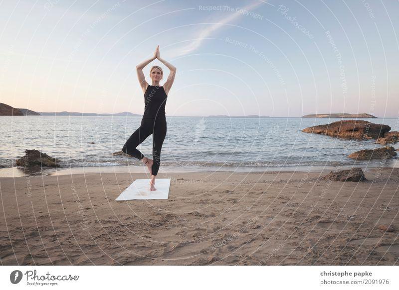 baum harmonisch Wohlgefühl Zufriedenheit Sinnesorgane Erholung ruhig Meditation Freizeit & Hobby Ferien & Urlaub & Reisen Sommer Sommerurlaub Strand Meer Wellen