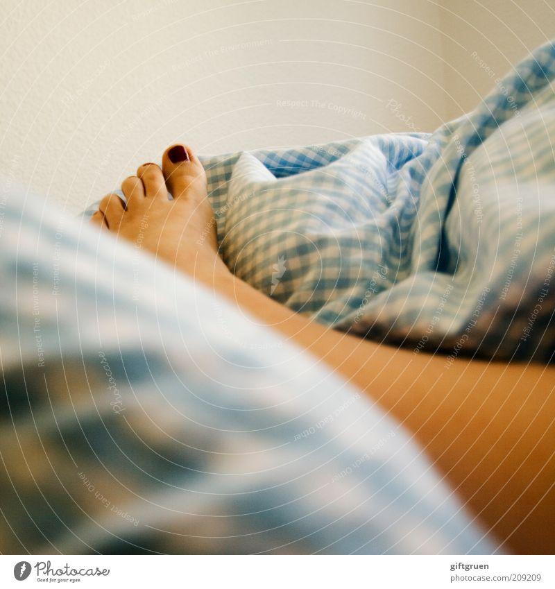 rise and shine Mensch feminin Frau Erwachsene Beine Fuß Zehen Zehennagel Körperteile 1 liegen schlafen Leben aufwachen Bett Bettwäsche kariert lackiert