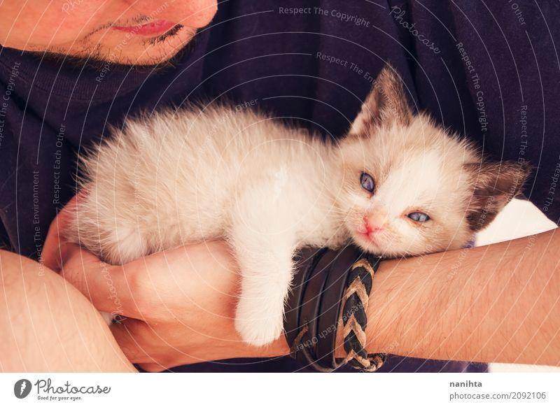 Katze Mensch Jugendliche schön Junger Mann Tier 18-30 Jahre Tierjunges Erwachsene Leben natürlich maskulin liegen beobachten niedlich Freundlichkeit