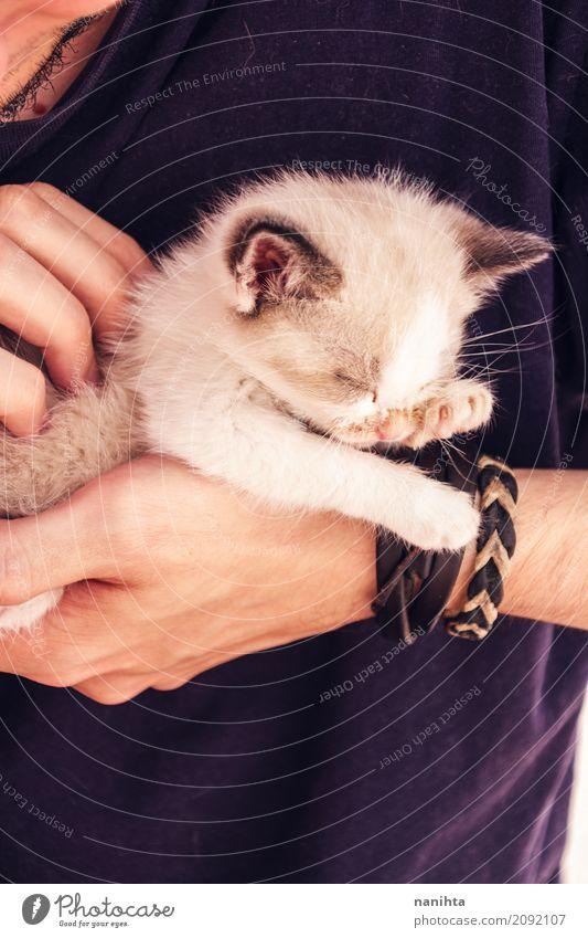 Junger Mann, der eine Schätzchenkatze mit seinen Händen hält Lifestyle Mensch maskulin Jugendliche 1 18-30 Jahre Erwachsene T-Shirt Armband Tier Haustier Katze