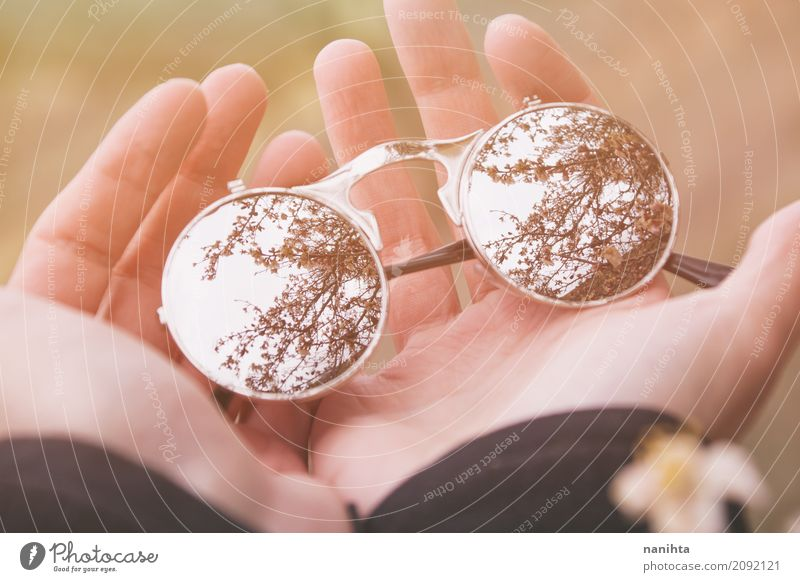 Hände, die Sonnenbrille mit einer schönen Blumenbaumreflexion halten Mensch Jugendliche Hand Finger 1 18-30 Jahre Erwachsene Umwelt Natur Sommer Baum Accessoire