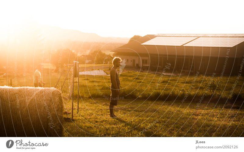 Sunny Day Lifestyle Freizeit & Hobby Spielen Ausflug Freiheit Sommer Sonne Feste & Feiern Mensch Familie & Verwandtschaft Freundschaft Natur Sonnenaufgang