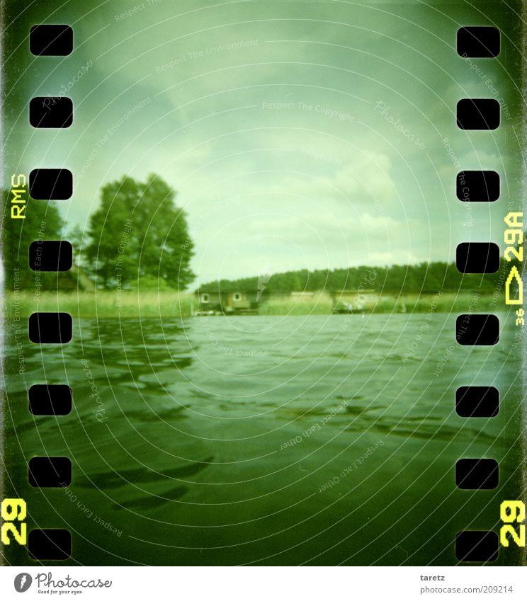 Nah am Wasser gebaut Himmel Natur grün Baum Sommer ruhig Erholung Umwelt Landschaft See natürlich nass Ausflug Schönes Wetter Idylle