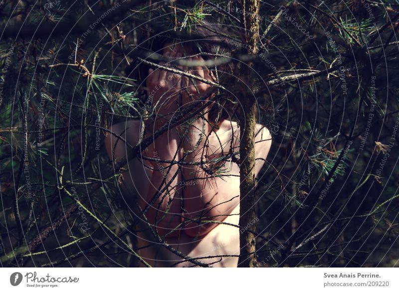versteckt. maskulin Haut 1 Mensch 18-30 Jahre Jugendliche Erwachsene Natur Dürre Pflanze brünett Locken Holz träumen Traurigkeit dünn Gefühle Stimmung Sorge