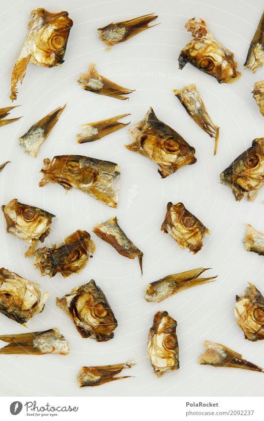 #A# Überfischung Essen Kunst Tod Lebensmittel Kopf ästhetisch Fisch viele Teile u. Stücke Müll Ekel Fischereiwirtschaft Rest Flosse
