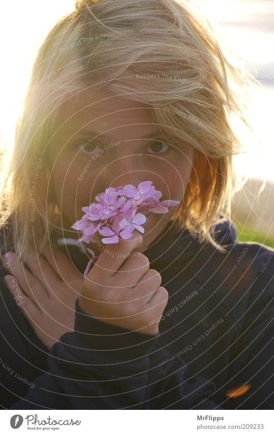 Zauber Frau Mensch schön Gesicht feminin Blüte blond Erwachsene rosa Vertrauen Lebensfreude Pullover Geruch Schönes Wetter Verliebtheit langhaarig