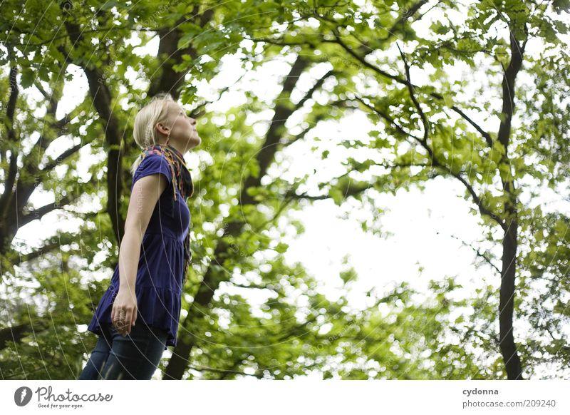 Gefühl Natur Jugendliche schön Baum ruhig Ferne Wald Erholung Leben Freiheit Landschaft Umwelt Bewegung Glück Frühling träumen