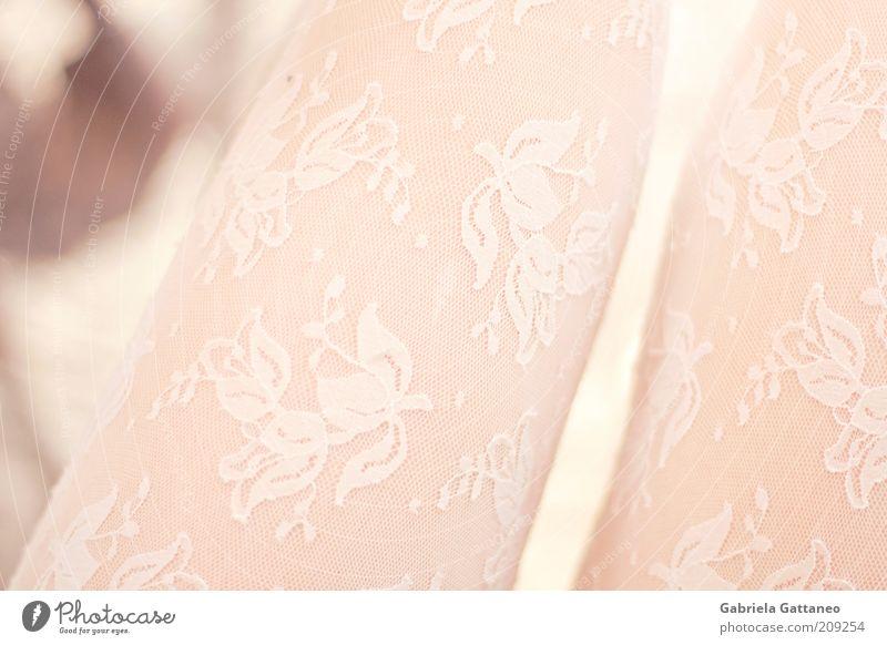 Beine feminin 1 Mensch Mode Bekleidung Strümpfe hell dünn weiß durchscheinend Farbfoto Schwache Tiefenschärfe schimmern durchsichtig Muster rosa Haut