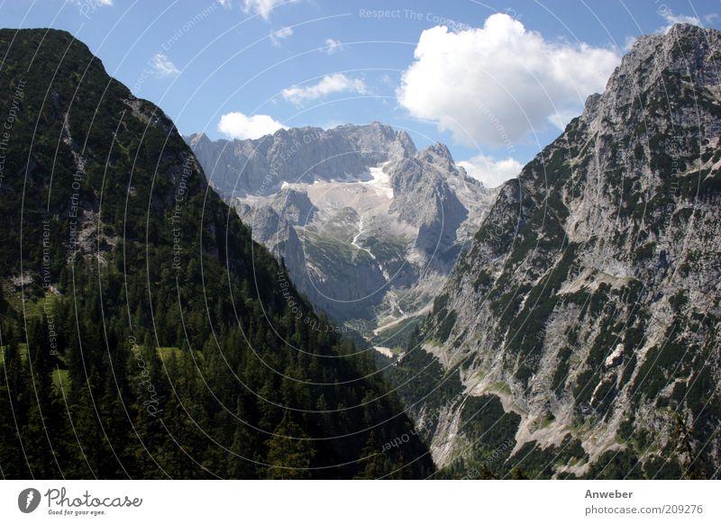 Zugspitze durchs Höllental Natur schön weiß Baum blau Sommer Wolken Ferne Wald Berge u. Gebirge Landschaft Deutschland Wetter Umwelt hoch Tourismus