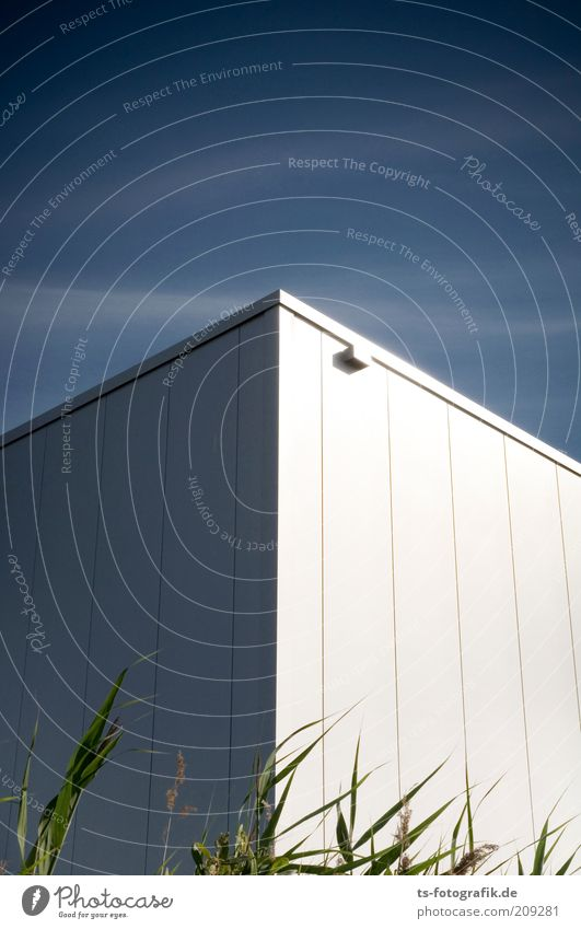 komische Ecke hier! Himmel blau Pflanze Wolken kalt Wand Mauer Gebäude Linie Metall Architektur hoch Fassade Wachstum Ecke Spitze