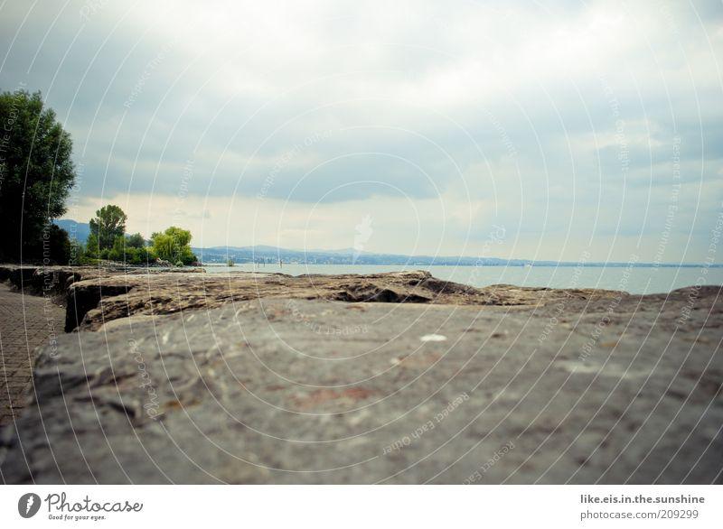 Komm, setz dich zu mir! blau Wasser Baum Sommer Wolken Einsamkeit ruhig Ferne Erholung Wand grau Küste Mauer See Felsen Pause